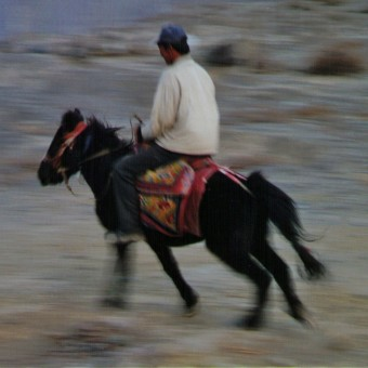THE WINDHORSES OF MUSTANG: Exploring Tibetan horse culturel